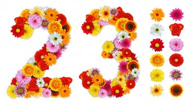 Numbers 2 and 3 made of various flowers