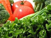 Fresh wet vegetables