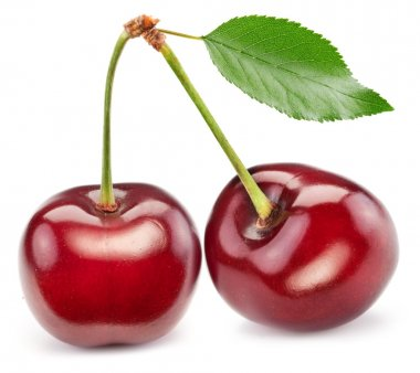 Two perfect sweet cherries with the leaf.