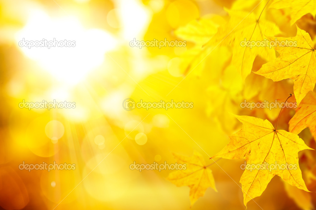Abstract orange autumn background