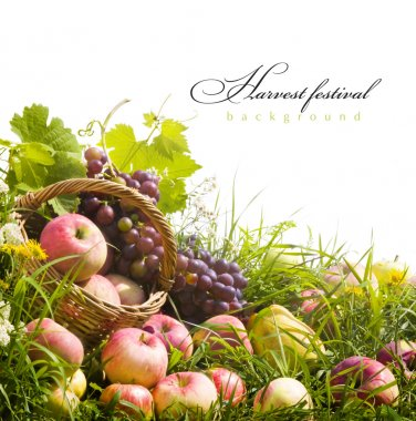 Abstract art autumn background with fruit on the grass