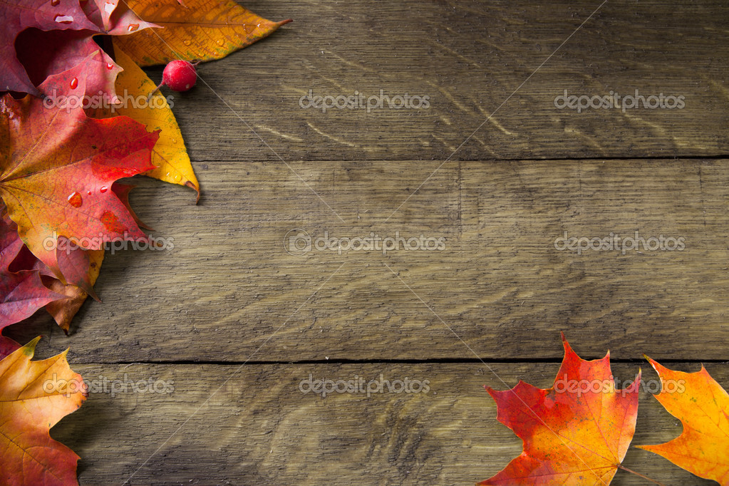 rustic themed wallpaper borders