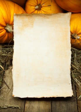 Art orange pumpkins and paper sheet on wooden background