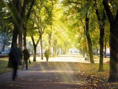 Autumn morning city alley