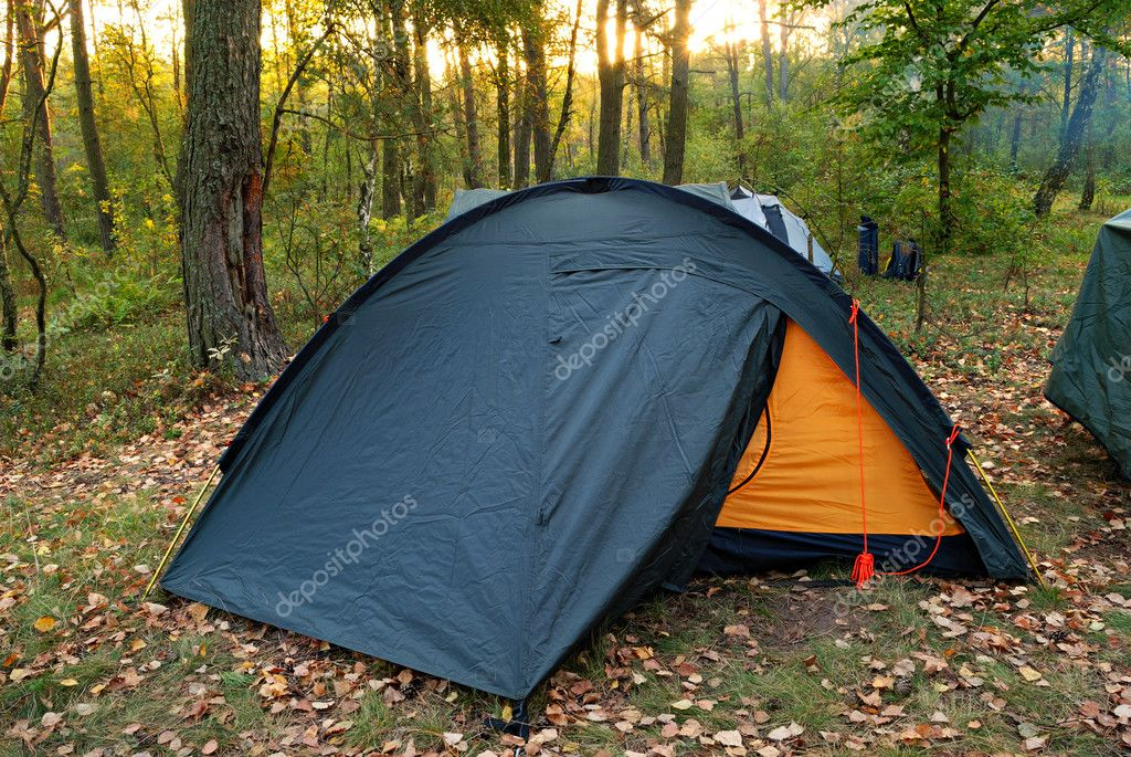 Camping tent in forest and rising sun