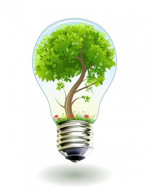 Green tree in lamp.