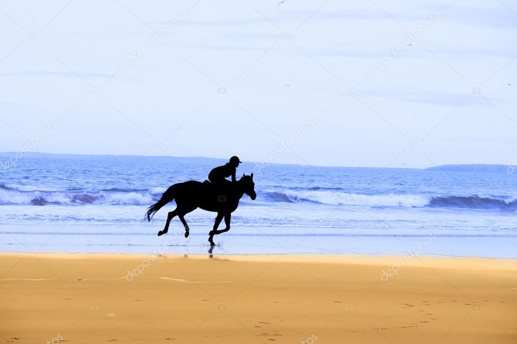 Horse and rider silhouette galloping along coast