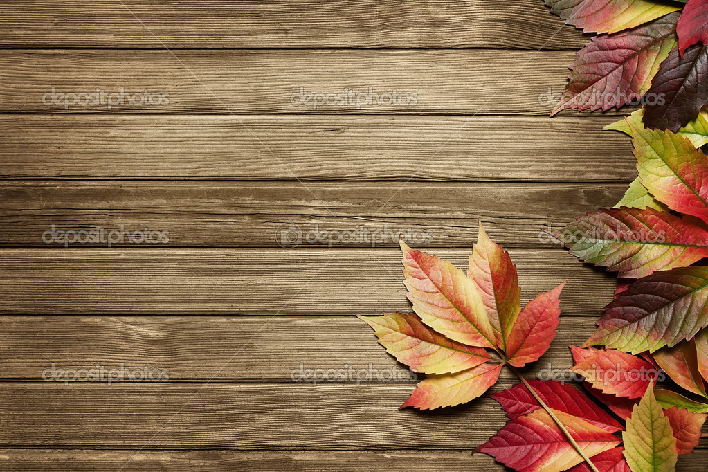 autumn background stock photo rangizzz 6968372