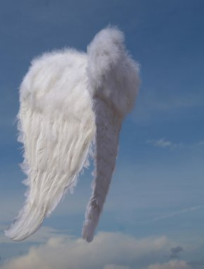 Christmas holidays set of angels wings