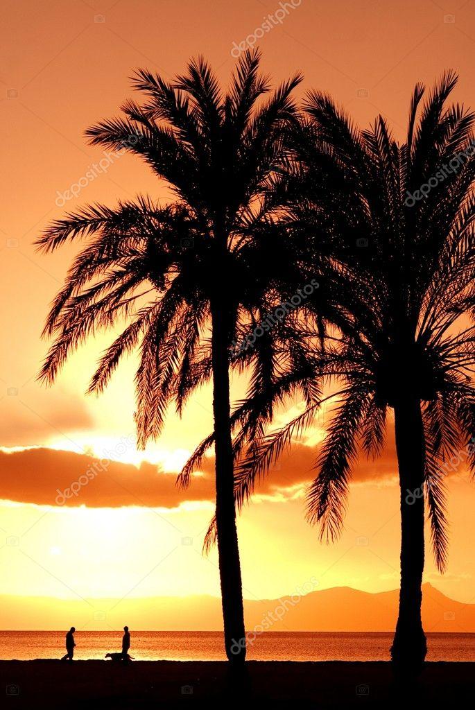 Sunrise or sunset on the mediterranean sea in mallorca