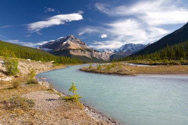 Beautiful canadian landscape, Jasper National Park, Alberta, Canada