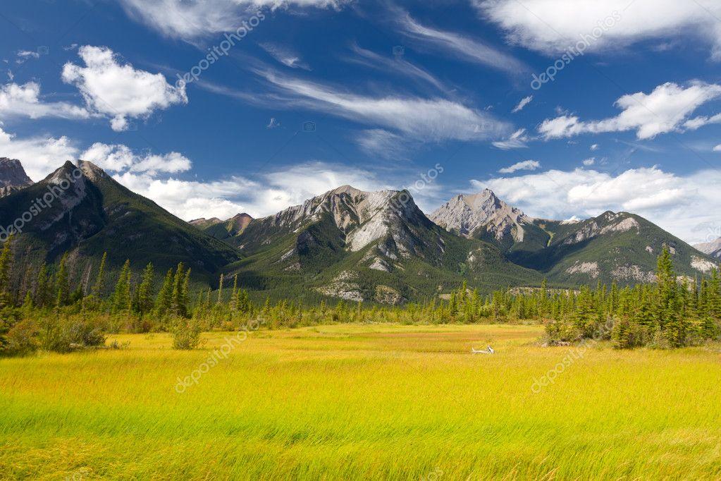 Beautiful Canadian Landscape, Jasper National Park, Alberta, Canada