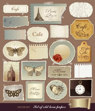 Vector collection of various vintage elements with old papers and the torn edges clip art vector