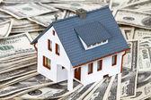 Fotografie Haus und Geld