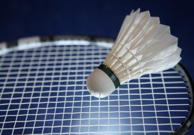 Badminton racket and shuttlecock on its strings