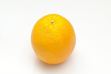 Orange isolated on white background stock vector