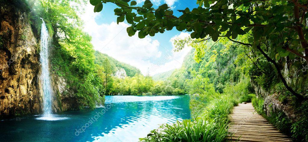 Фотообои Водопад в глубоком лесу