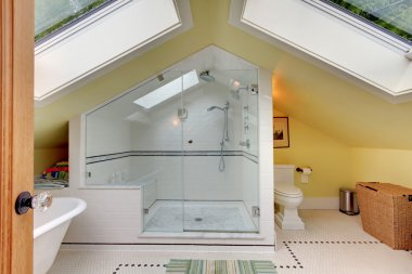 Attic new remodeled modern bathroom with shower