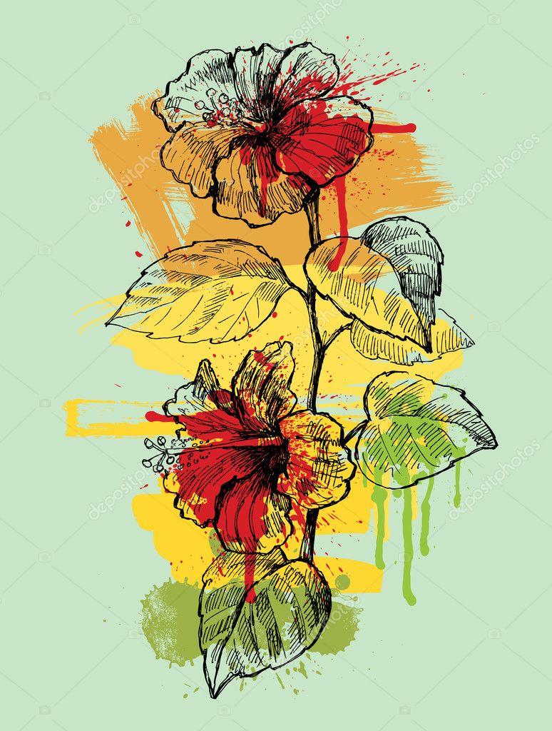 Hibiscus hand drawn illustration