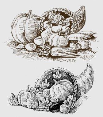 Thanksgiving or harvest cornucopia
