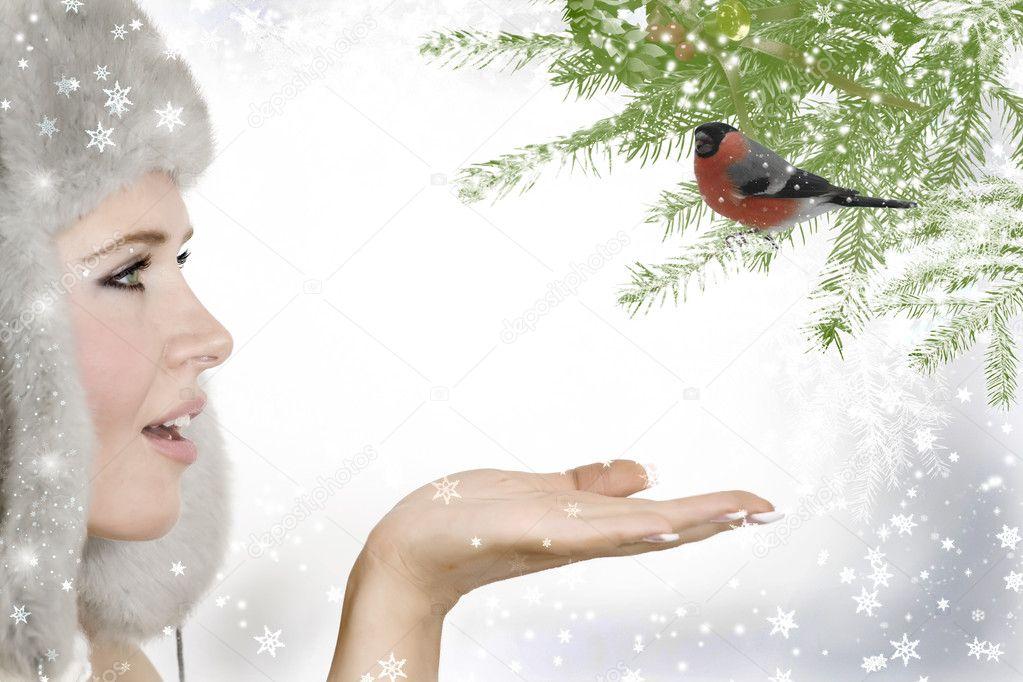 Snow Princess and bullfinch