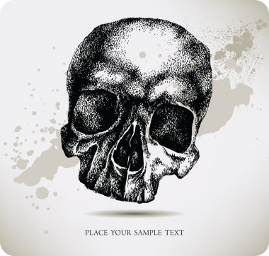 Skull hand drawing. Vector illustration.