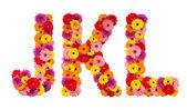 levél j k l - elszigetelt fehér virág ábécé