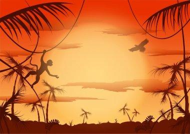 Dawn in jungle, Vector illustration