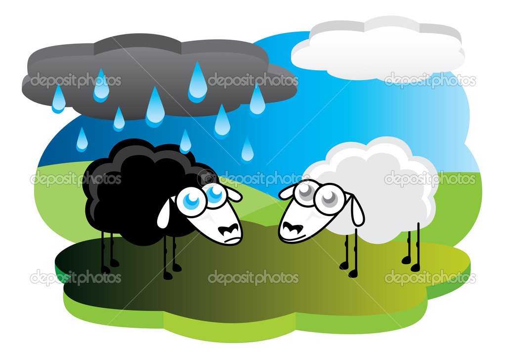 Black sheep under rain cloud
