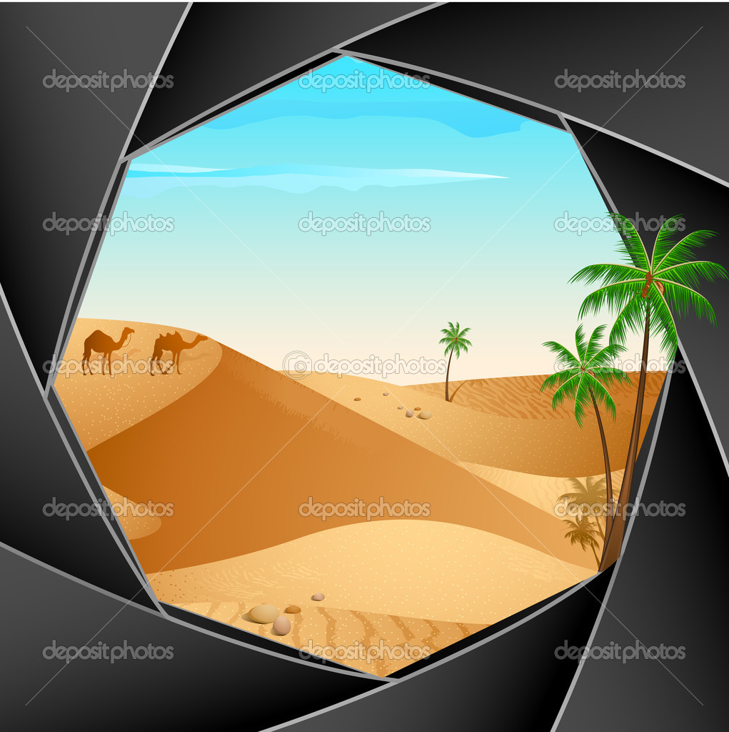 Desert Scene through Camera