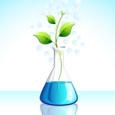 Biotechnological Plant