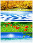 Fotografie Four seasons collage
