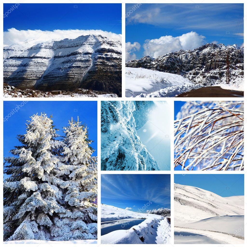 фото коллаж краснообск зимой они выглядели