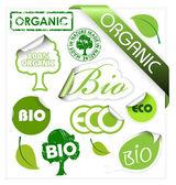 Satz von Bio, Öko, organische Elemente