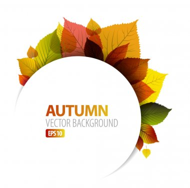 Autumn abstract floral background with place for your text stock vector