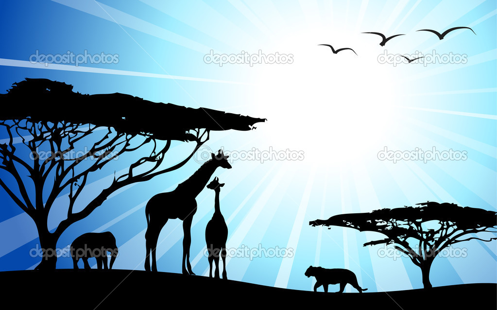 Africa, safari - silhouettes