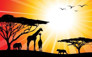 Africa or safari - silhouettes