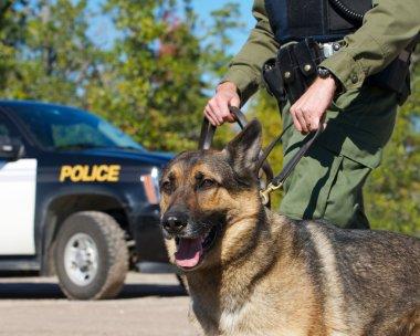 Law Enforcement.