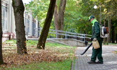 Landscaper operating gas Leaf Blower