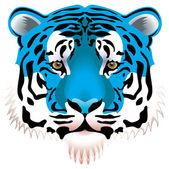 Modrý Tygr hlava