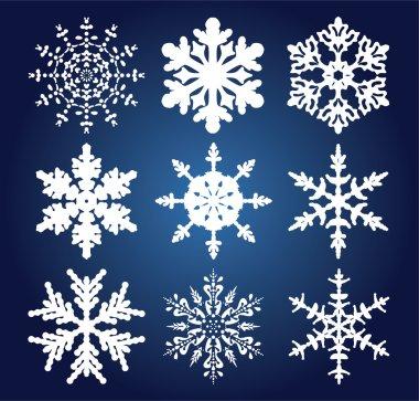 Set of 9 snowflakes
