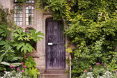 Fotografie Wooden front door of old stone brick house covered in ivy and pl