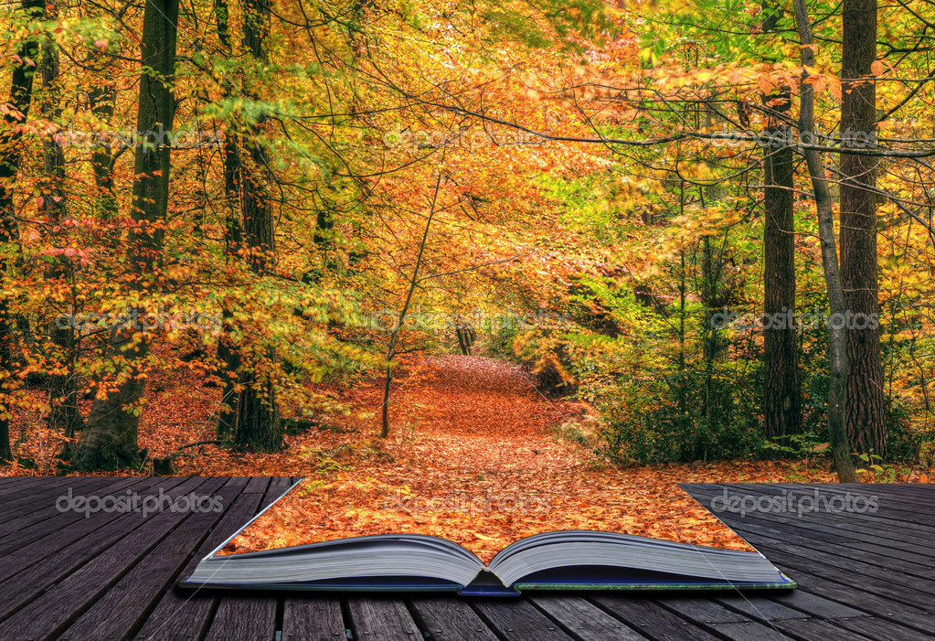 Creative concept idea of Beautiful Autumn Fall forest scene in p