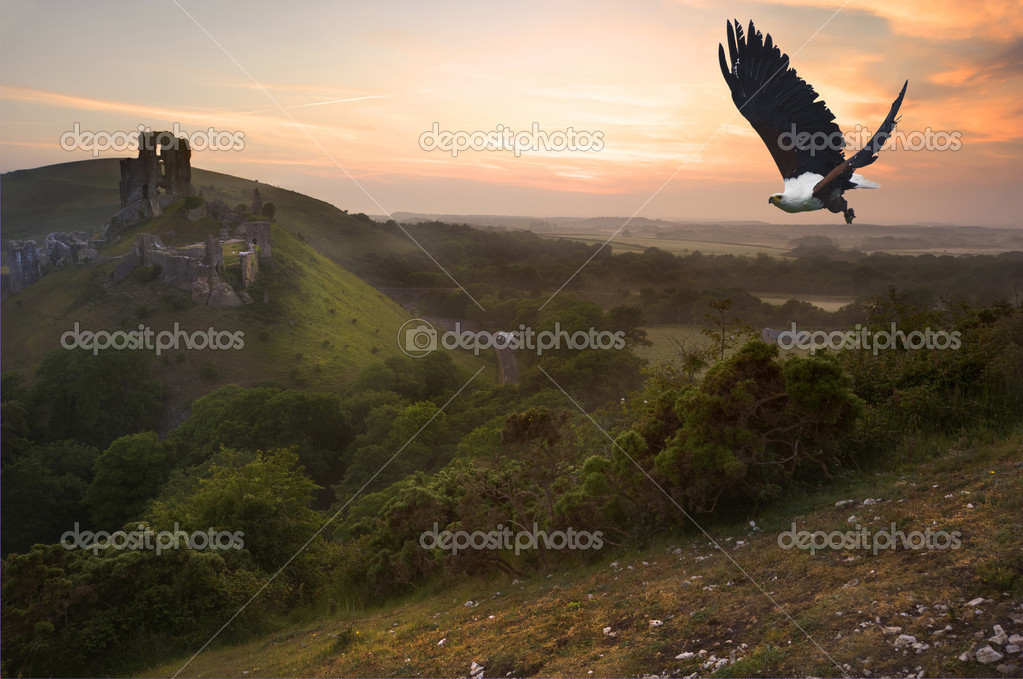 African fish eagle in flight over magical castle landscape