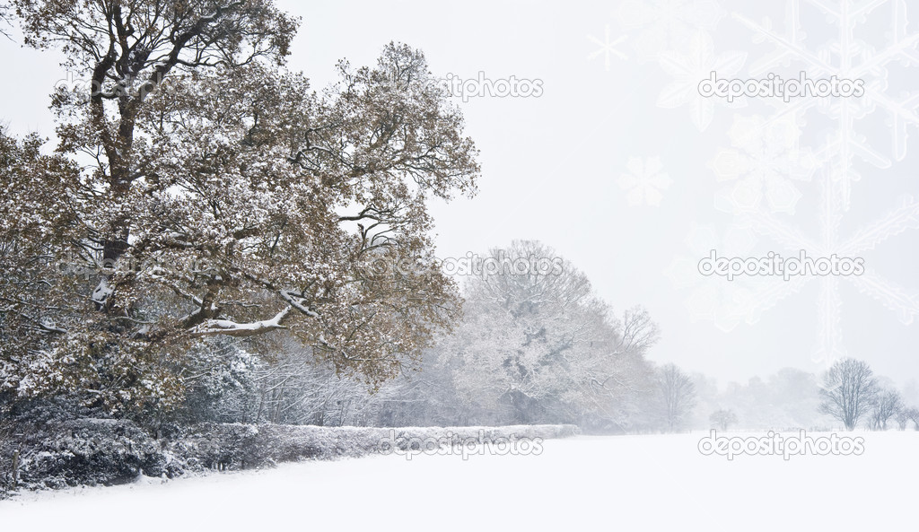 White Christmas Winter snow landscape