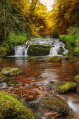 Waterfall flowing through Autumn Fall forest landscape