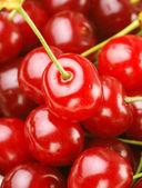 csokor friss cseresznye és meggy