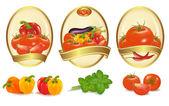 Fényképek három különböző fajta zöldség arany címkéket. vektor