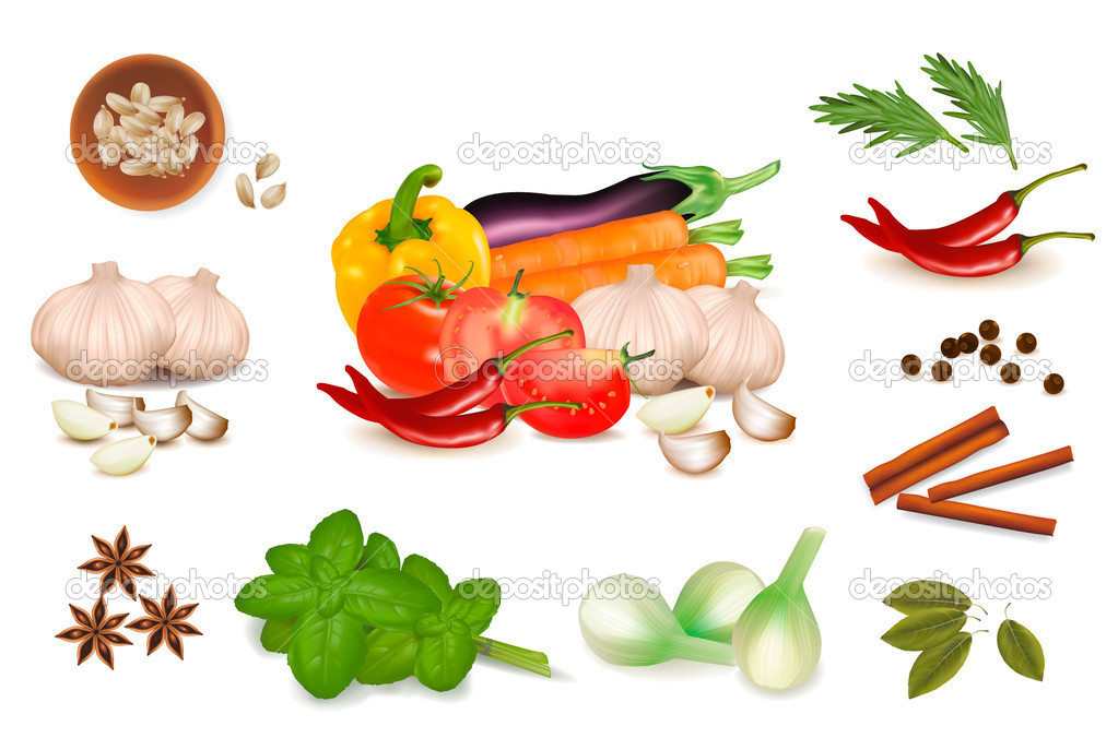 Set with spices and vegetables. Vector illustration.