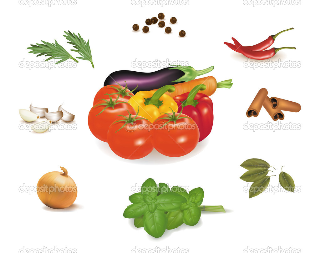 Spice collection isolated on white background. Vector.